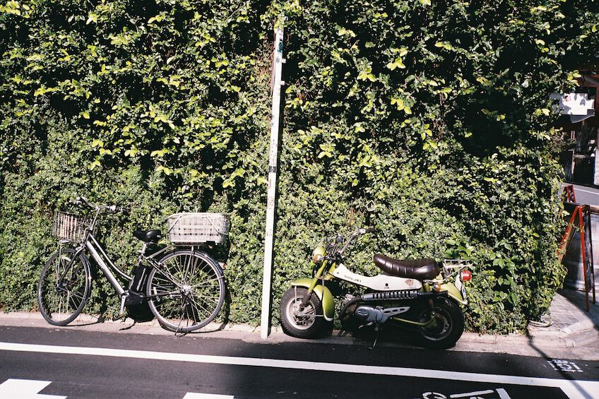 Parking green motorbike and grey bike in front of a hedge