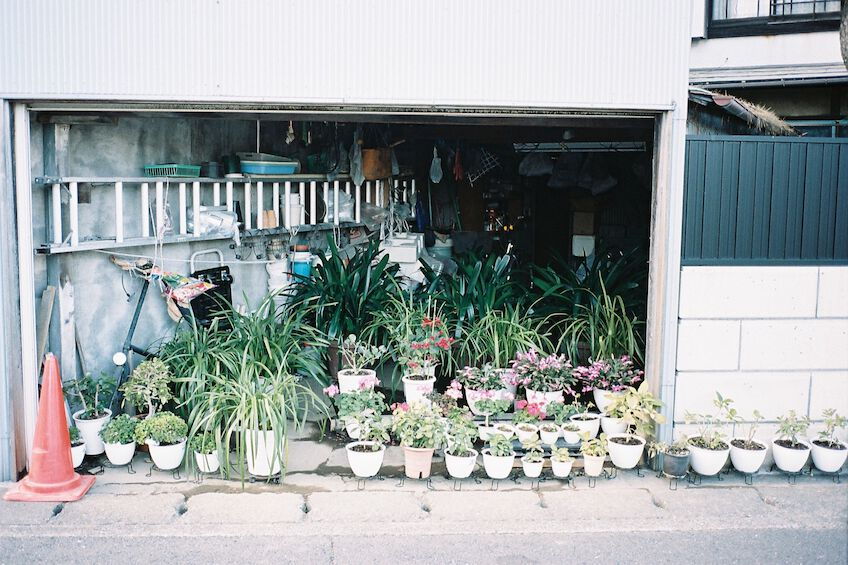 Garage full of plants in pots