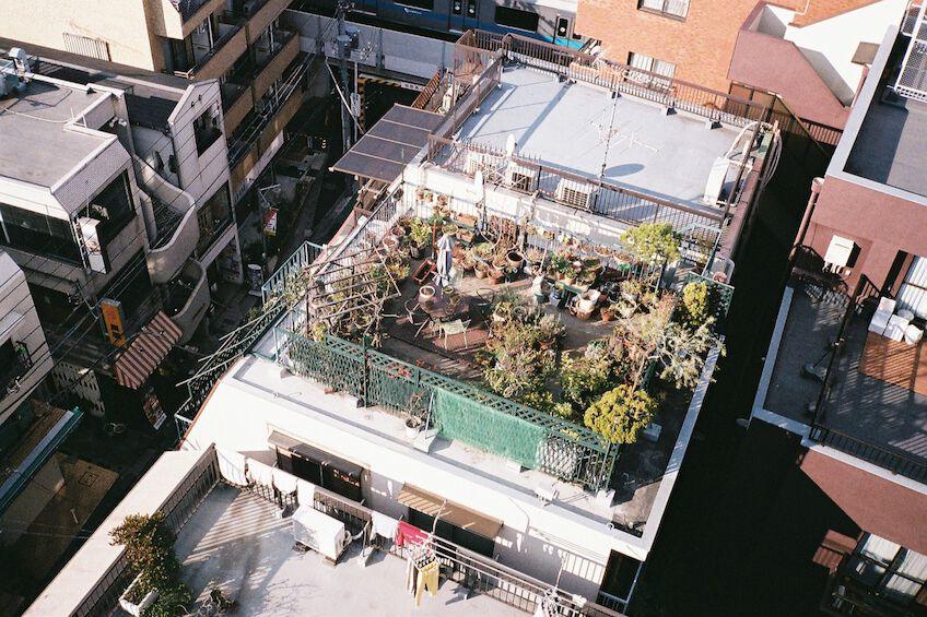 Rooftop garden from above